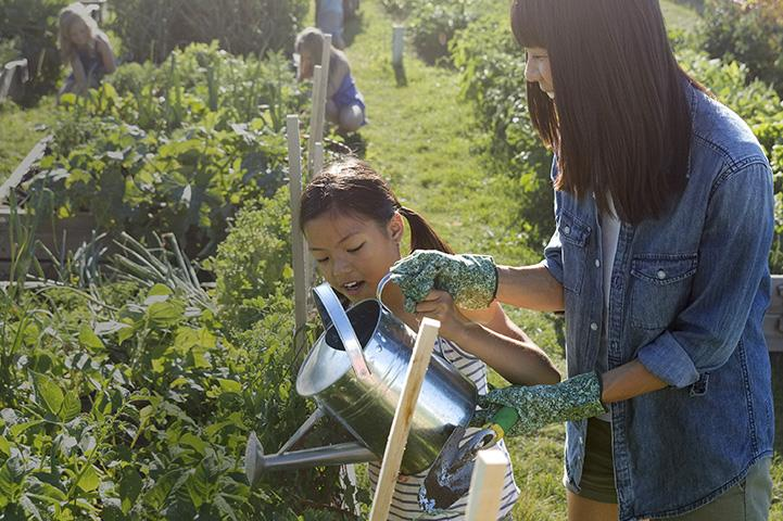 An image of a mother and daughter watering plants in a community garden.